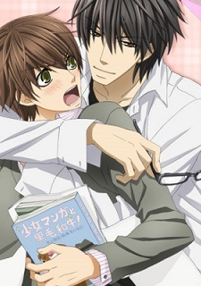 http://onewdesign.files.wordpress.com/2011/04/anime-season-preview-spring-2011-mal-sekai-ichi-hatsukoi.jpg